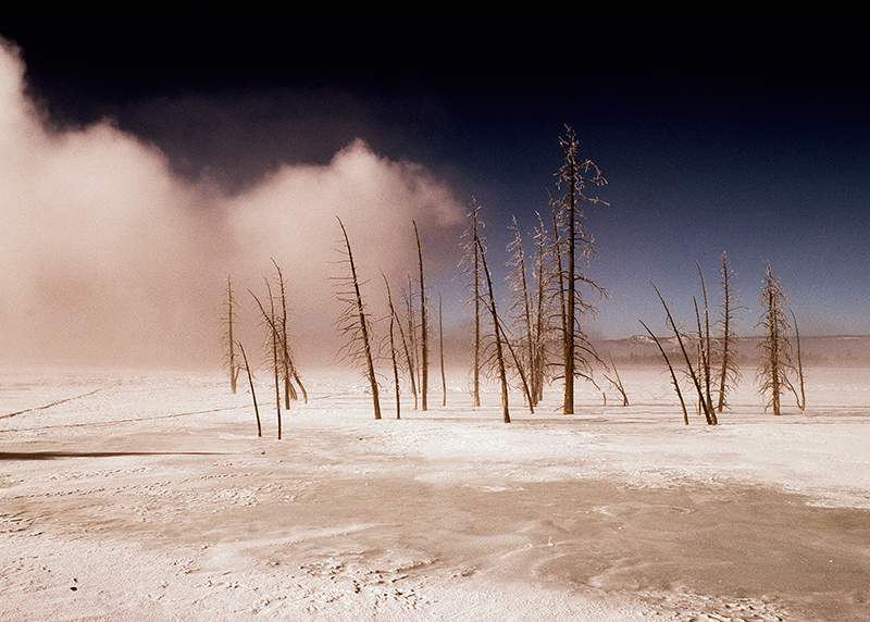 Winter, Lower Geyser Basin, Yellowstone
