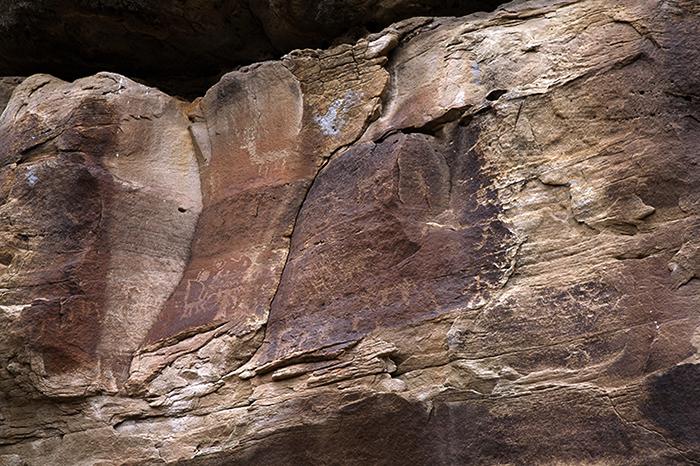 Encierro Canyon 0529