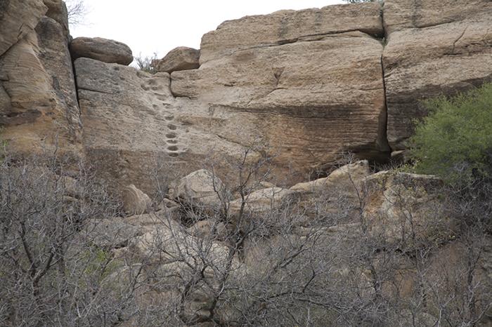 Encierro Canyon 0555