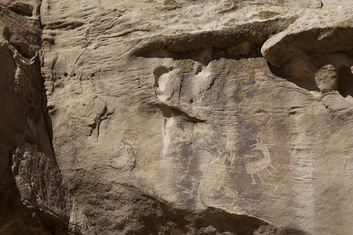 Encierro Canyon 150