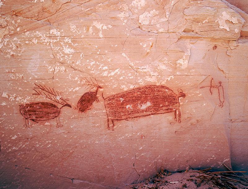 Horseshoe Rock Shelter, Utah