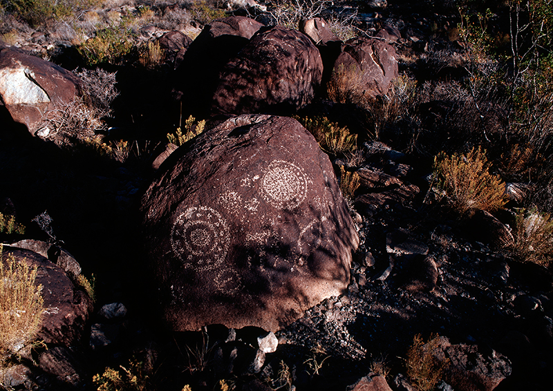 Three Rivers Petroglyph Site, New Mexico #6