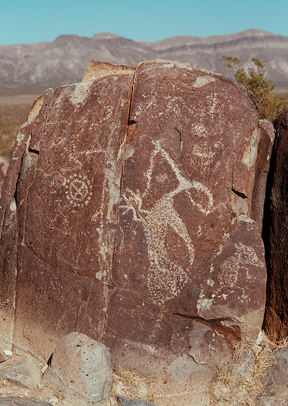 Three Rivers Petroglyph Site, New Mexico #7