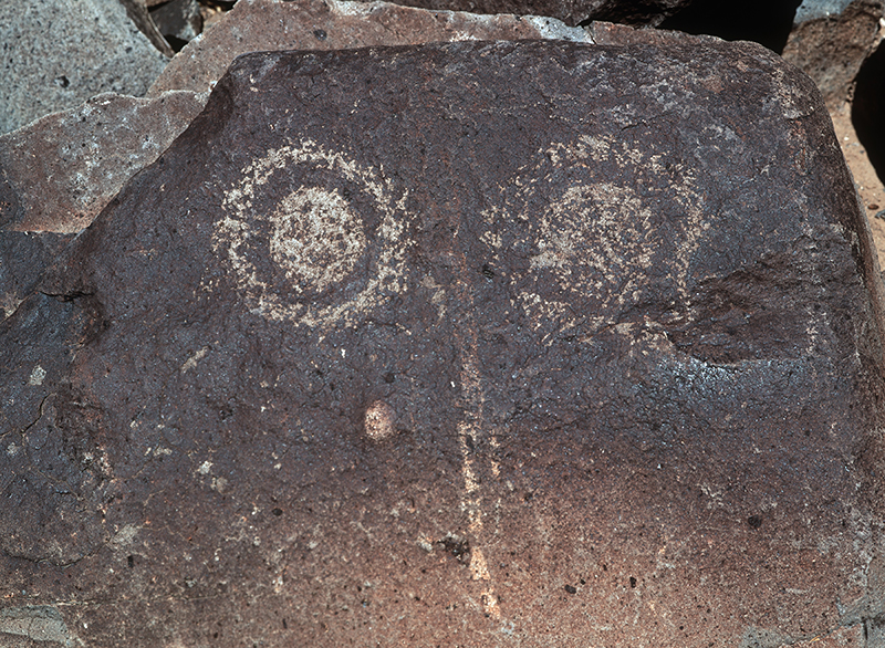 Three Rivers Petroglyph Site, New Mexico #9