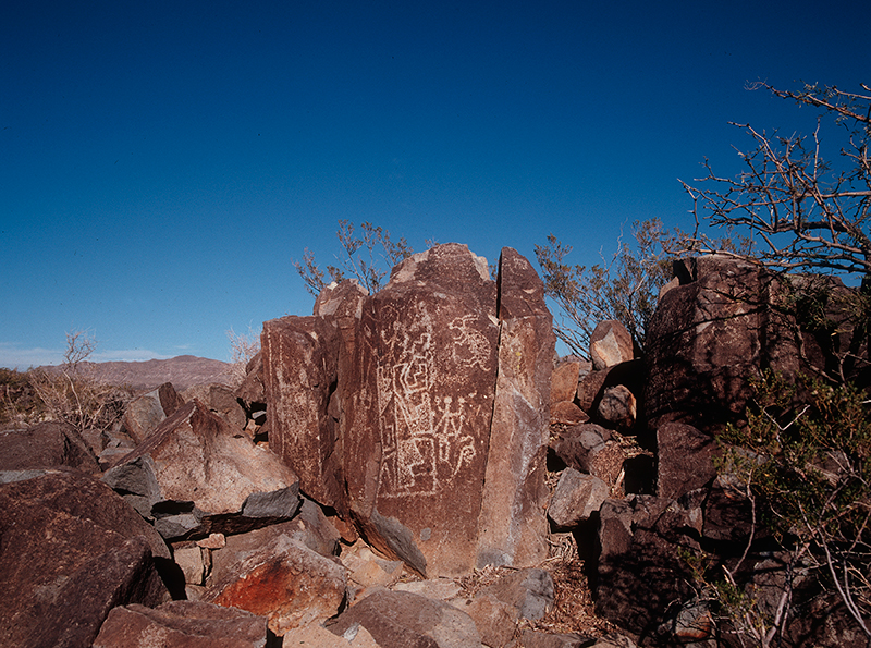 Three Rivers Petroglyph Site, New Mexico #12