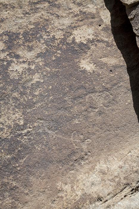 San Rafael Canyon 1291